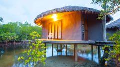 Bo i en liten stuga i mangroveskogen på ön Koh Payam.