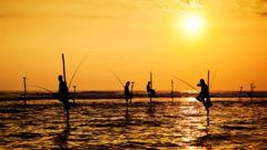 Lokala fiskare på styltor på Sri Lanka.