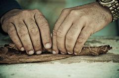 Cigarr-rullning är en tradition som går långt tillbaka på Kuba.
