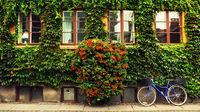 6 anledningar att välja Danmark i sommar