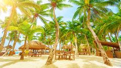 Playa del Carmen har något att erbjuda alla.