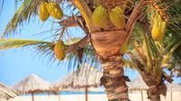 Därför ska du resa till Kap Verde